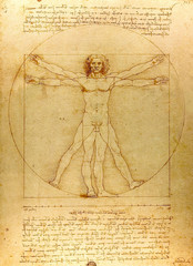 Vitruvian man.  Drawing of Leonardo da Vinci