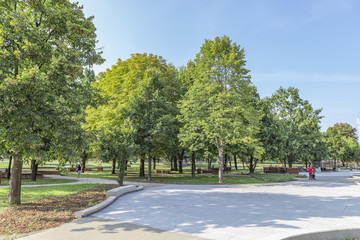 Green park in Warsaw