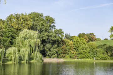 Green park and lake in Warsaw