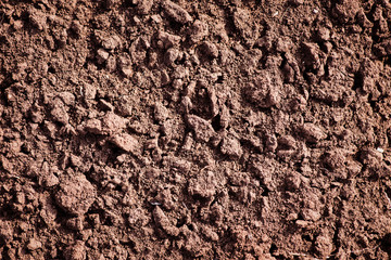 Soil, cultivated dirt.
