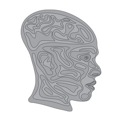 terrain face