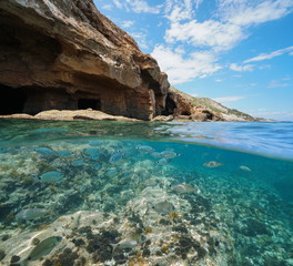 Rocky coast with cave on the sea shore and a shoal of fishes underwater, split view above and below water surface, Mediterranean, Cova Tallada, Costa Blanca, Javea, Alicante, Valencia, Spain