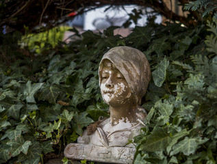 Büste, Statue in Garten mit Efeu