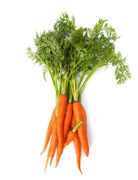 Fresh carrot heap vegetables isolated on white