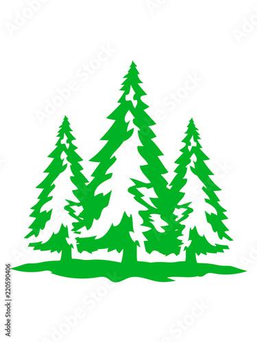 Clipart Tannenbaum Schwarz Weiß.3 Bäume Weiß Grün Weihnachtsbaum Weihnachten Nikolaus Winter