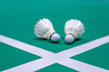 badminton white line with blurred shuttlecock on green court
