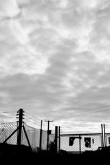 Monochrome silhouetted security fencing to farmland in rural Hampshire against an early morning cloudy sky