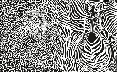 Background with leopard and zebra