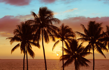 Tropical island sunset.