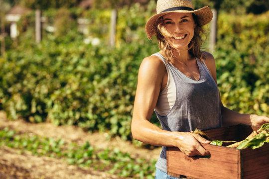 Friendly woman harvesting fresh vegetables from farm
