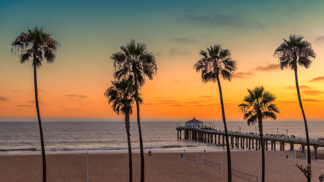 Palm trees at Manhattan Beach. Vintage processed.