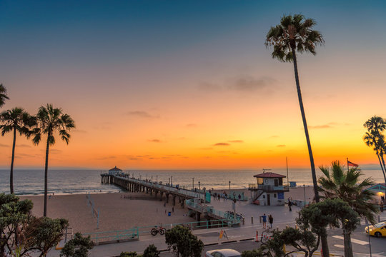 Palm trees and Pier on Manhattan Beach at sunset in California, Los Angeles, USA. Fashion travel and tropical beach concept.