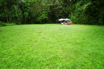 nature landscape camping tent with tarp or flysheet under big tree on green grass meadow and waterfall in jungle garden or forest for family vacation picnic on holiday relax travel and rainy season