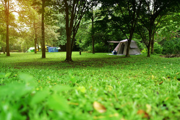 nature landscape camping tent under tree on green grass meadow and waterfall in jungle or forest national park for family vacation picnic on holiday relax travel and rainy season with warm sunlight
