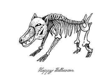 Holidays And Celebrations, Illustration Hand Drawn Sketch of Dog Skeleton Evil Isolated on White Background. Sign For Halloween Festival.