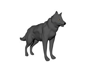 Dunkler Wolf auf Futtersuche