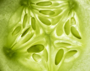 Macro photo of an illuminated lemon cucumber slice.