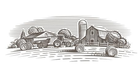 Farm landscape illustration. Vector.  Wall mural