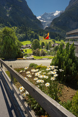 View of a mountain landscape from a resort of Grindelwald with marguerites on foreground, Switzerland