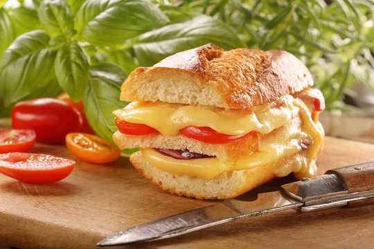Grilled cheese sandwich with tomato and onion on wooden background