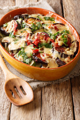 Summer recipe for eggplant casserole with tomatoes, herbs and cheese close-up in a baking dish. vertical