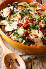 Vegetable casserole from eggplants with tomatoes and mozzarella cheese and parmesan close-up. vertical