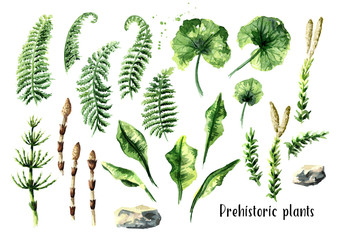 Prehistoric plants set. Watercolor hand drawn illustration, isolated on white background