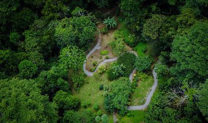 Costa Rica Garten