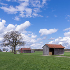 Barns in the countryside