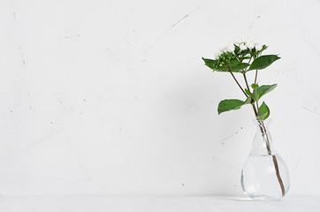 White small flowers in transparent vase on soft white wood table with copy space, modern elegance home decor.