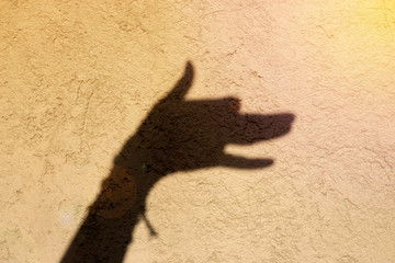 Hand shadow looks like a young dog barking. Theatre. Wall.