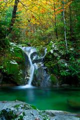 Gebirgsbach mit Wasserfall und Gumpe im Herbst