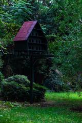 Bird house in a garden