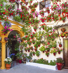 Old town of Cordoba with flowers