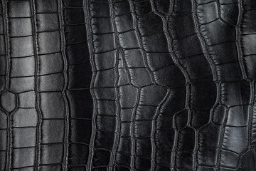 Wall Mural - Black crocodile leather texture, as background