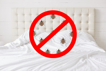 Stop sign with insects against bed background. There should be any bugs in bedroom. Hotel room being testified on cleanliness and purity
