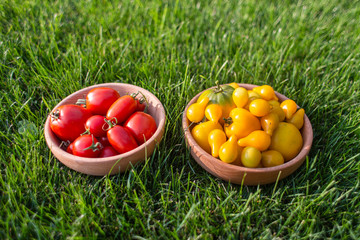 Red and yellow tomatoes on a wooden plate
