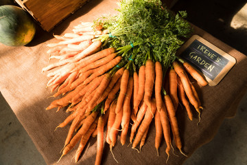 Fresh carrots bundled and cleaned for sale at a market stand