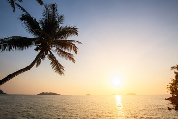Sunset on the tropical coast with silhouettes of palm tree over water.