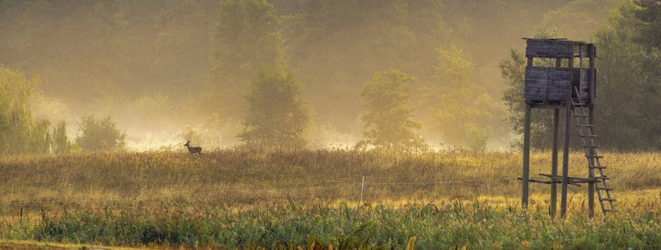 hunting tower in the valley in the morning mists