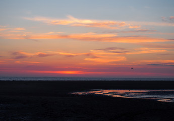 A twilight beach scene with darkness falling after sunset with glowing illuminated clouds reflected in the water on a dark beach with a seagull flying in the distance taken in blackpool