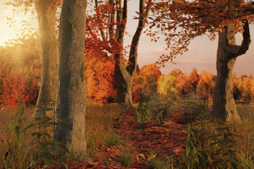 3d rendering of scenic forest pathway in the autumn season and evening sunlight