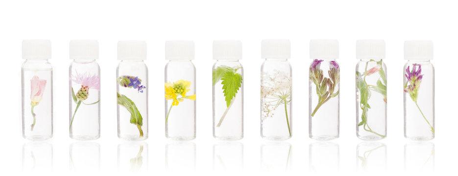 Natural remedies - FLORITERAPIA Bacha.