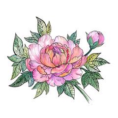 Beautiful Peony flower, bouquet of peonies, tattoo