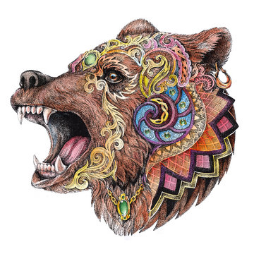 Head enrage bear with decorative ornaments, watercolor drawing, tattoo