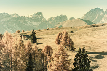 Autumn Vintage Landscape with Mountains