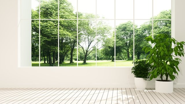 The interior minimal Empty space 3d rendering and nature view background