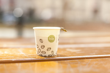 Kaffeebecher mit Bio Cafe. Bio coffe to go in paper cup on table.