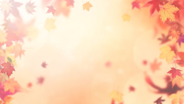 Abstract autumn backround with soft fall colors