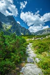 Trail to black lake under Rysy peak, Tatra Mountains, Poland